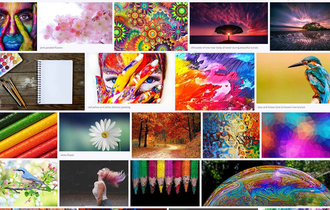 Colourful Social Media Guide 2020 Images